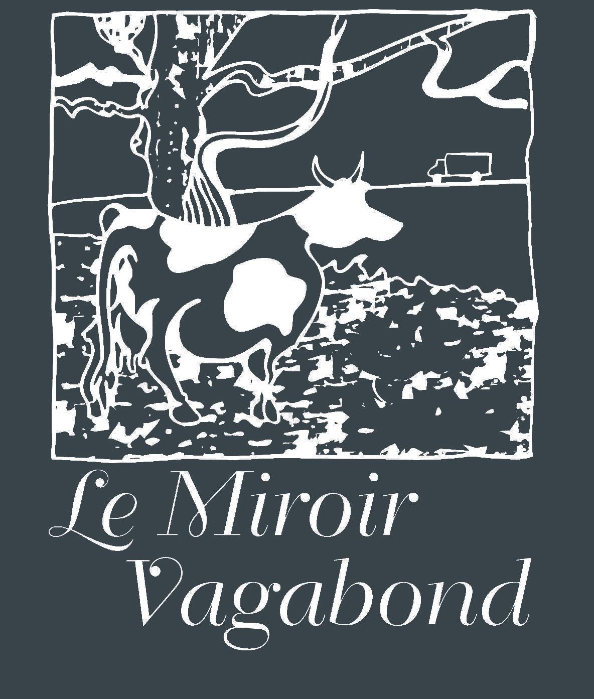 accueil miroir vagabond asbl